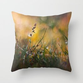 Beyond the Imagination Throw Pillow