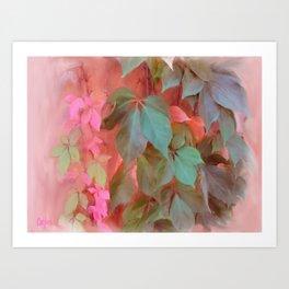 Napa Ivy Art Print