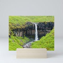 Svartifoss Waterfall - Iceland Mini Art Print