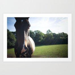 """Munchy"" the Horse Art Print"