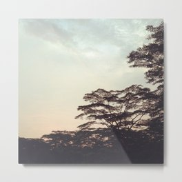 the faint sunset Metal Print