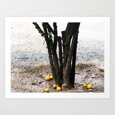 Roots/Fruits Art Print