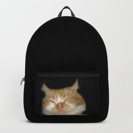 Funny Sleeping Cat Backpack