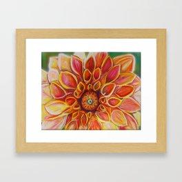 I dream of Dahlias Framed Art Print