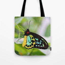 Goliath Birdwing Tote Bag