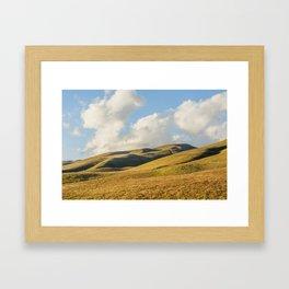 Of Hills And Hawks Framed Art Print