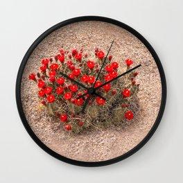 Sandia Cactus Flowers Wall Clock