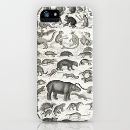 Mammalia from A history of the earth and animated nature (1820) by Oliver Goldsmith (1730-1774). iPhone Case