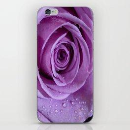 Purple Rose-3 iPhone Skin