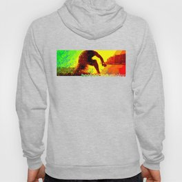 Surf Stance Hoody