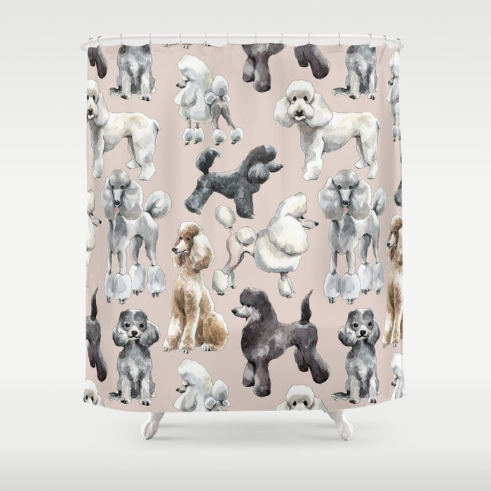 Poodles Shower Curtain By Mazdavies