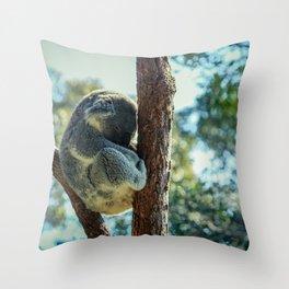 12,000pixel - 500dpi, High Quality Photograph - Sleeping koala Bear III Throw Pillow