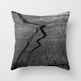 Ancient Tree Rings Throw Pillow