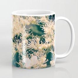 Hydrangea at June Coffee Mug