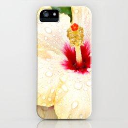 dawn iPhone Case