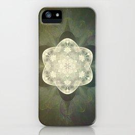 Ultimate Ohm iPhone Case