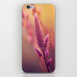 Celosia iPhone Skin