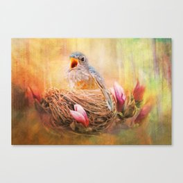 Hungry Bluebird Canvas Print
