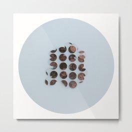 Pennies Metal Print