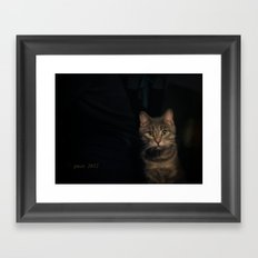 Boriss the cat Framed Art Print
