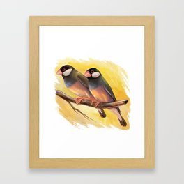 Java Sparrow finches realistic painting Framed Art Print
