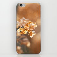 gold glitter iPhone & iPod Skins featuring Gold Glitter by Katie Kirkland