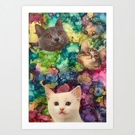 Cute Cat Faces Art Print