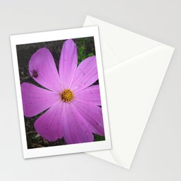 Lady Cosmos Stationery Cards