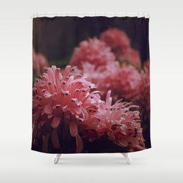 Pink Bellingrath Floral Shower Curtain