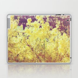 yellow flower - Forsythia Laptop & iPad Skin