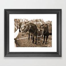 Donkeys in Santorini Framed Art Print