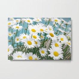 Daisies flowers in painting style 5 Metal Print