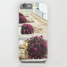 Southern Charm Slim Case iPhone 6s