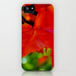 Up Close And Colorful iPhone Case