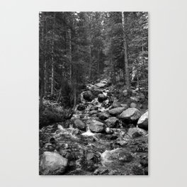 Mountain Creeks Canvas Print
