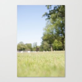 Another Sunny Day Canvas Print