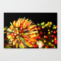 Efflorescence 27 Canvas Print