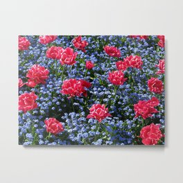 Sun-Drenched Flowerbed Metal Print