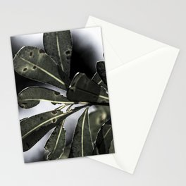 Leafy Afternoon Stationery Cards