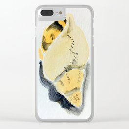 seashell collection 3 Clear iPhone Case