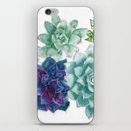 Succulent Art, Watercolor Painting, Purple and Green Flowers, Garden Art iPhone Skin