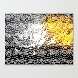 What You See? Canvas Print