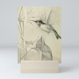 Vintage Print - Hummingbird Mini Art Print
