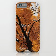 Autumn II Slim Case iPhone 6s