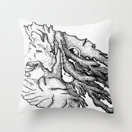 Wise Locks Throw Pillow