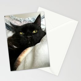 THE CAT WITH NO NAME M* Stationery Cards