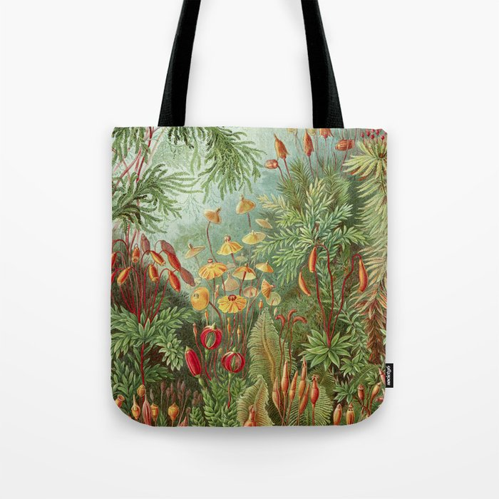 Scientific Ilration Of Moss In The Forest Haeckel 1904 Tote Bag