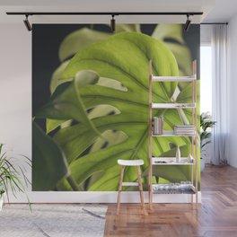 Monstera Layers Wall Mural