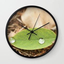 Summer drops Wall Clock