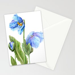 Himalayan Blue Stationery Cards
